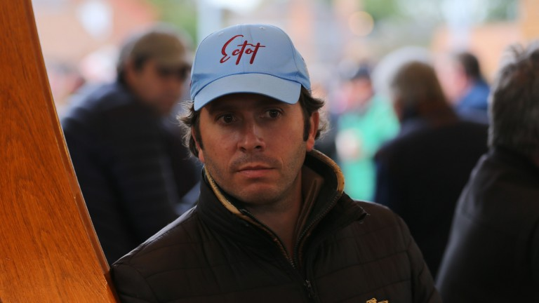 """Sebastien Desmontils: """"It's been very tough to get these horses and we've been outbid quite a few times"""""""