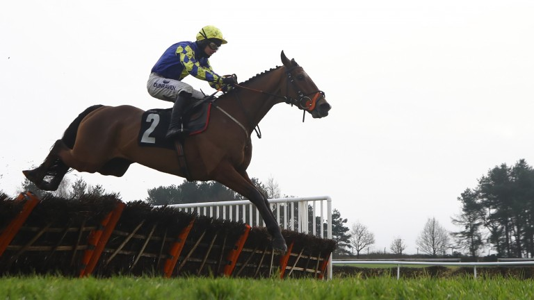 MARKET RASEN, ENGLAND - JANUARY 16: Connor Brace riding Art Approval on their way to winning the MansionBet Watch & Bet Novices' Hurdle at Market Rasen Racecourse on January 16, 2021 in Market Rasen, England. (Photo by Tim Goode - Pool / Getty Images)