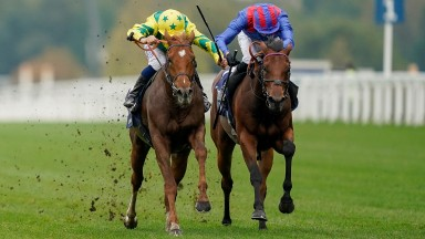 Sealiway and Mickael Barzalona (left) hold off Dubai Honour and James Doyle to win the Champion Stakes