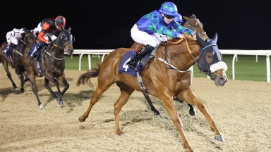 CAPTAIN VALLO Ridden by Ryan Sexton wins at Newcastle 12/10/21Photograph by Grossick Racing Photography 0771 046 1723