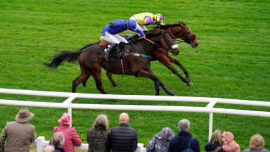 Niall Houlihan riding Hackbridge (blue) clear the last to win at Plumpton Racecourse on October 18, 2021