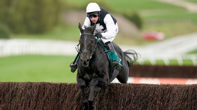 CHELTENHAM, ENGLAND - OCTOBER 22: Harry Skelton riding Third Time Lucki clear the last to win The squareintheair.com Novices' Chase at Cheltenham Racecourse on October 22, 2021 in Cheltenham, England. (Photo by Alan Crowhurst/Getty Images)