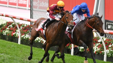 MELBOURNE, AUSTRALIA - OCTOBER 23: John Allen riding State of Rest defeats Craig Williams riding Anamoe in Race 9, the Ladbrokes Cox Plate, during Melbourne Racing on Cox Plate Day at Moonee Valley Racecourse on October 23, 2021 in Melbourne, Australia. (