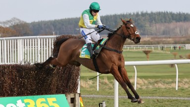 Cloth Cap and Tom Scudamore win at Kelso 6/3/21