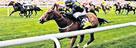 Newmarket (July) Racecourse